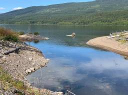 Mount of rebuilt Edney Creek at Quesnel Lake. Cleaned shoreline with gravel placed for fish spawning, planted shrubs, and placed coarse woody debris--Aug 2019
