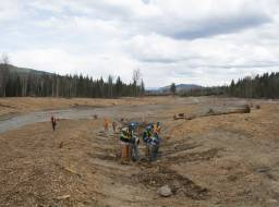 Hazeltine Creek preparatory work for planting. Planting crew from Xatsull FN (Soda Creek Indian Band)--Apr 2015 Apr 2015